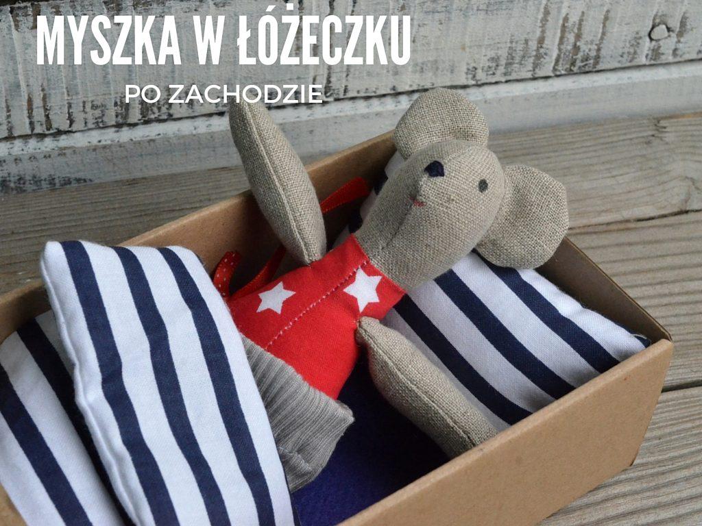mysz po zachodzie wrocław (9)