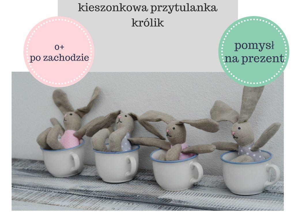 pomysl-na-prezent-mikolaj-urodziny-swieta-dla-dzieci-po-zachodzie-3