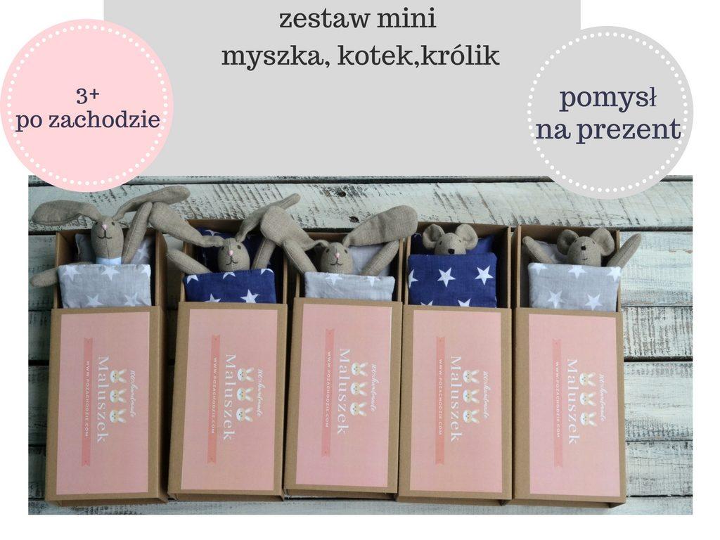 pomysl-na-prezent-mikolaj-urodziny-swieta-dla-dzieci-po-zachodzie-6